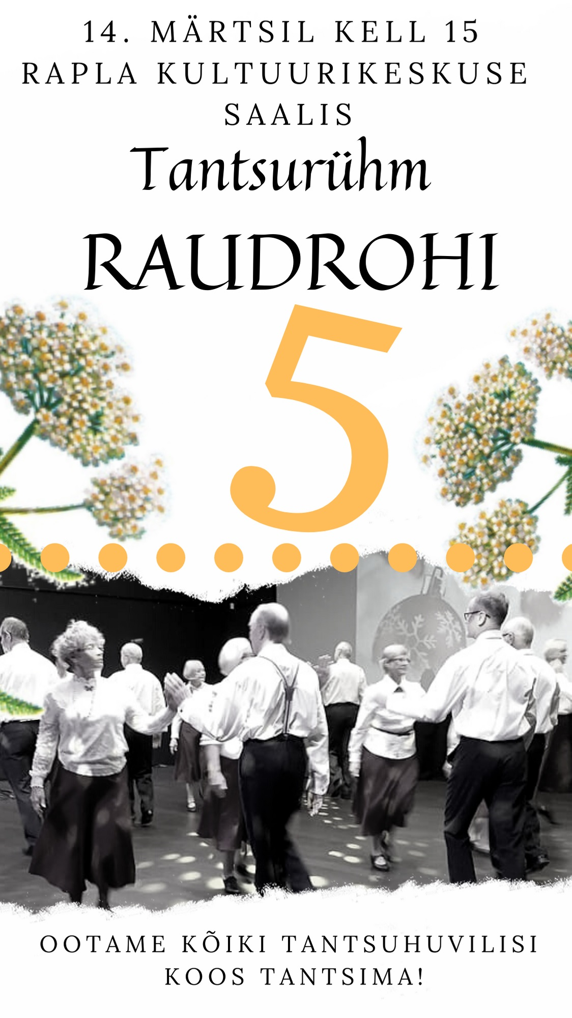 Raudrohi 5