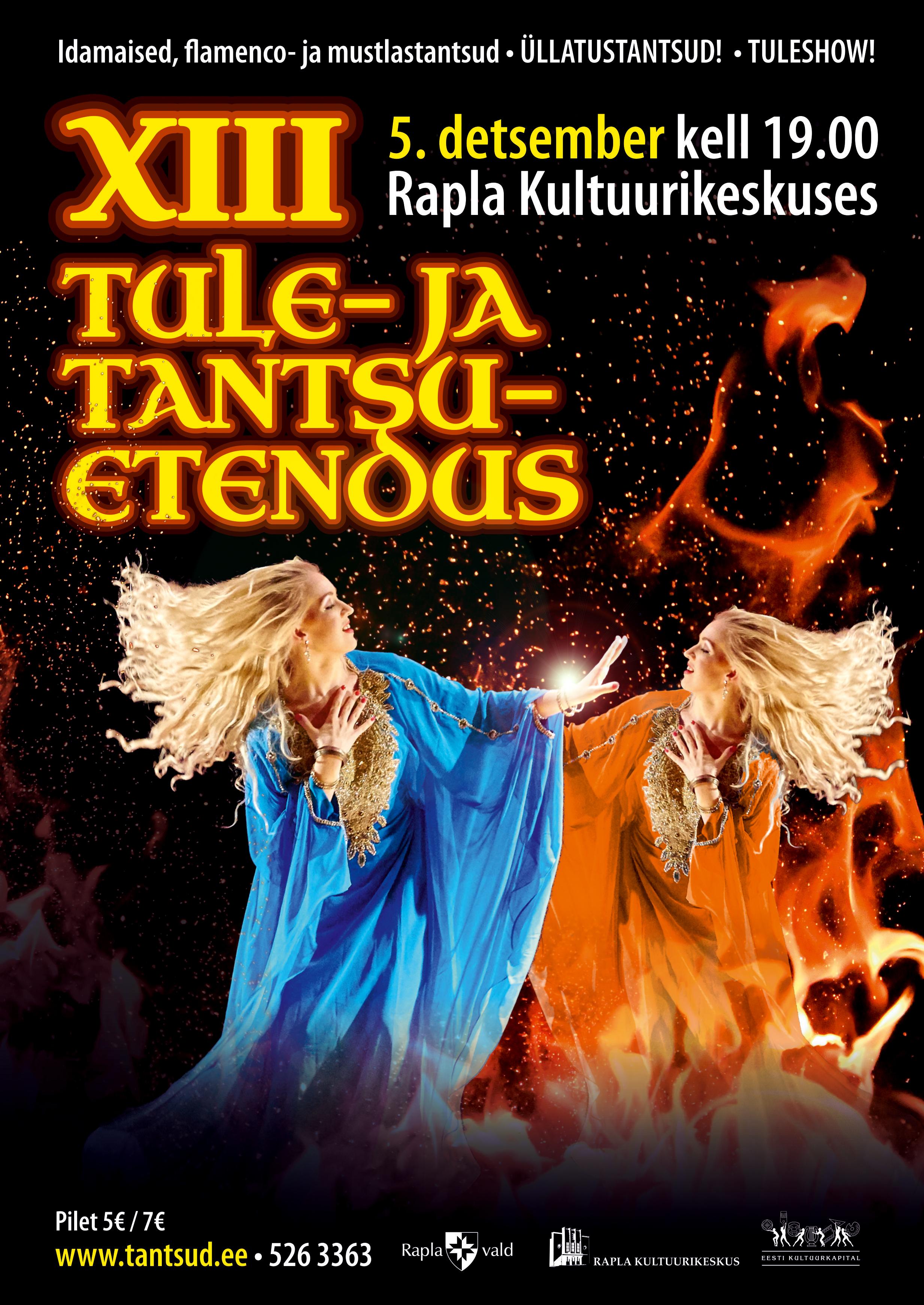 XIII Tule- ja tantsuetendus